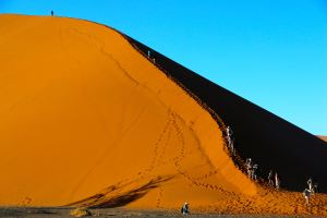 Travellers climbing Dune 45