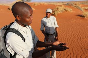 Our bushmen guides click their way to another tale about dung or bugs!