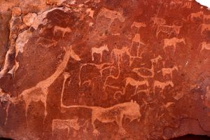 Stone carvings at Twyfelfontein